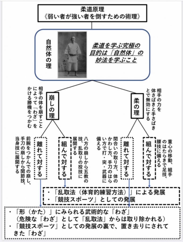 柔道原理 資料
